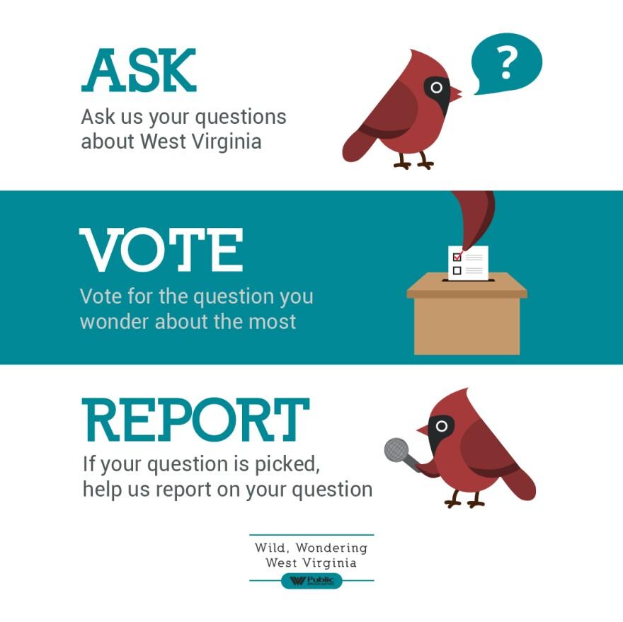 The Wild, Wondering West Virginia Process - Ask, Vote Report