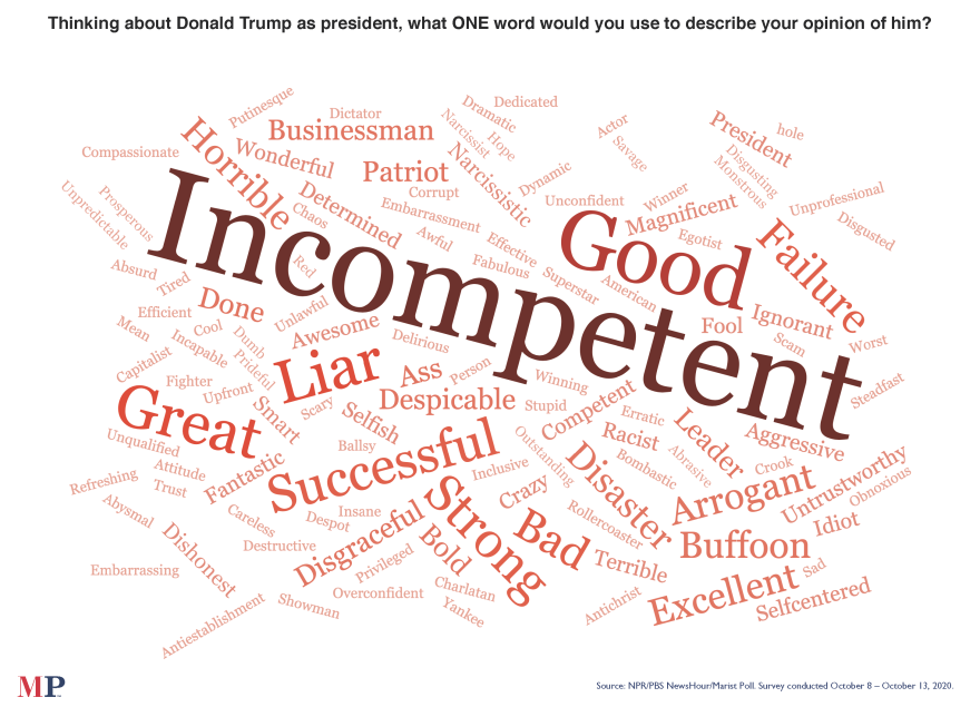 "The NPR/PBS NewsHour/Marist poll asked what word comes to mind when thinking about President Trump. ""Incompetent"" stood out."