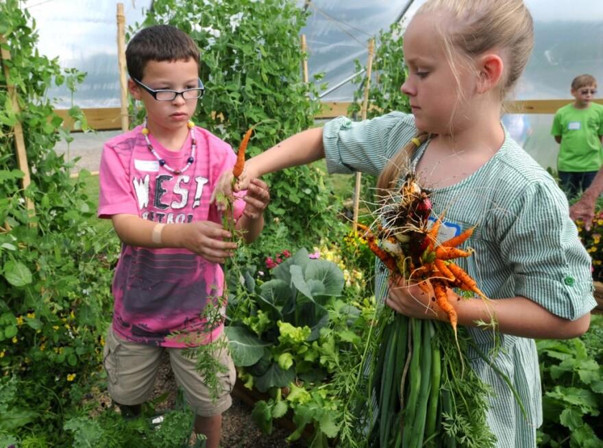 Kids_school_garden.jpg