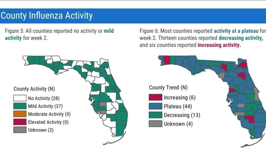 Graphic showing county influenza activity across the state of Florida