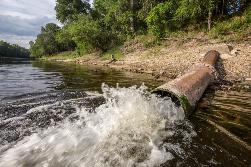 Wastewater pours into the Suwannee River from a Pilgrim's Pride processing plant in Live Oak, Florida