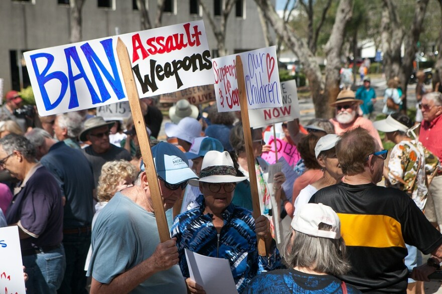 Violence-Gun-Protest-Rally-Ban-Assault-Weapons-3608964.jpg