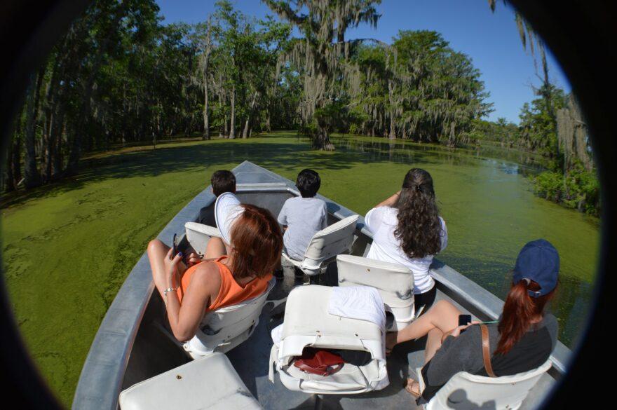Lake Martin, Louisiana. Cajun Country Swamp Tour. (Joe Yogerst)