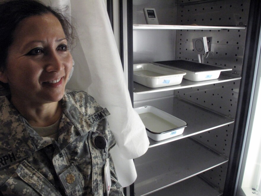 Maj. Jittawadee Murphy, an entomologist, stands near trays of incubating mosquito larvae used to determine whether experimental drugs and vaccines can prevent malaria.