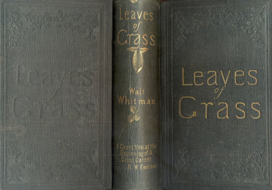 A shot of the 1856 edition of Walt Whitman's <em>Leaves of Grass</em>, with Emerson's blurb on the spine.
