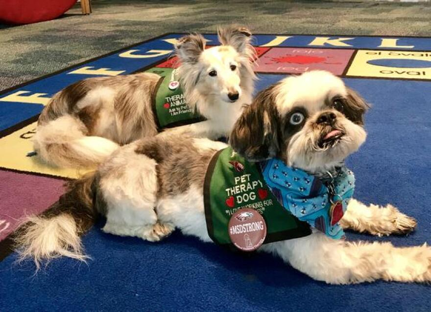Kids coming to Wags&Tales get individual reading time with therapy dogs like Sydney, left, and Zoe, right, from the Humane Society of Broward County.