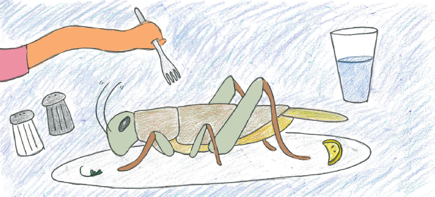 Drawing of a green cricket on a dinner plate and a hand holding a fork, ready to dive into the cricket.