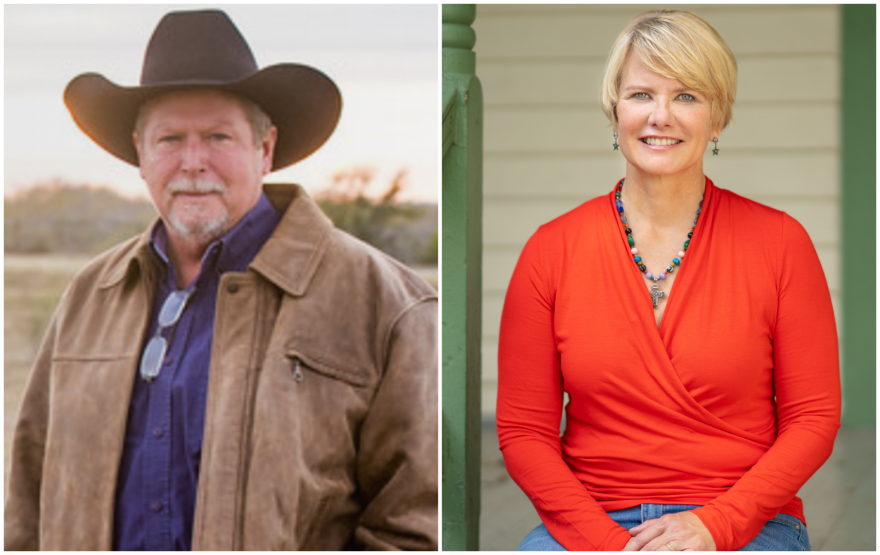 Republican Jim Wright is competing with Democrat Chrysta Castaneda for a seat on the Texas Railroad Commission