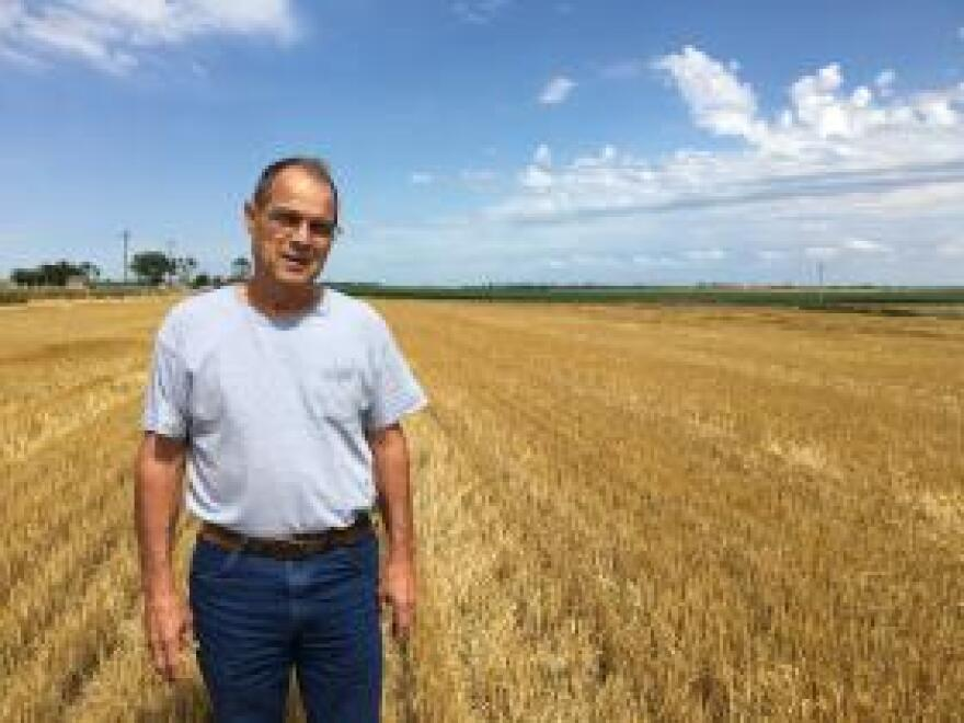 Tom Giessel, 64, is a Kansas wheat farmer who harvested 1,800 acres of wheat in late June. He stands here in his field near Larned, Kansas.