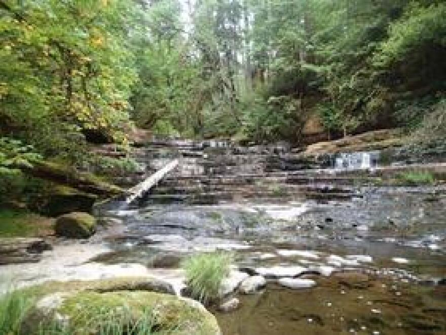 Devil's Staircase on the Siuslaw National Forest.