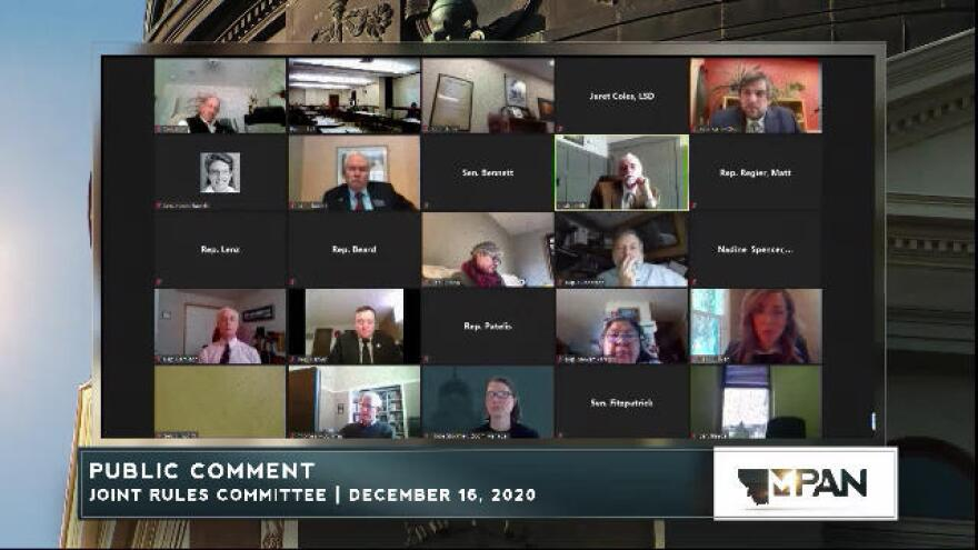 Lawmakers participate online during a joint House & Senate Rules Committee meeting, December 16, 2020.