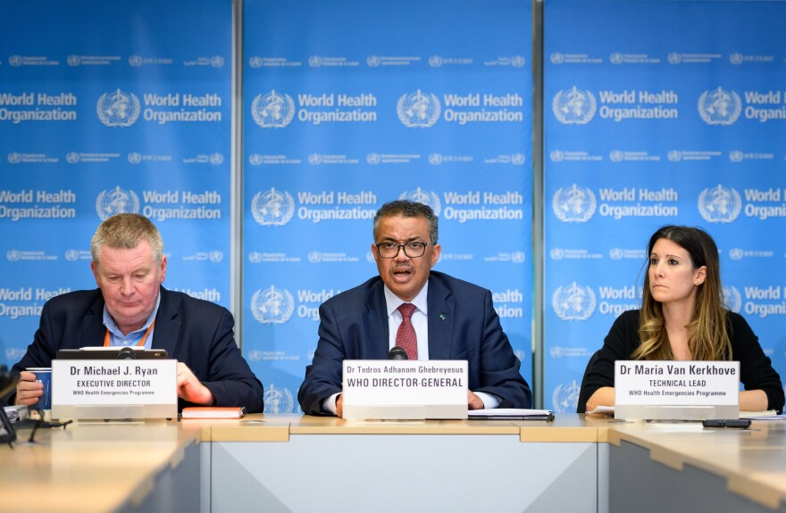 World Health Organization leaders at a press briefing on COVID-19, held on March 6 at WHO headquarters in Geneva. Here's a look at its history, its mission and its role in the current crisis.
