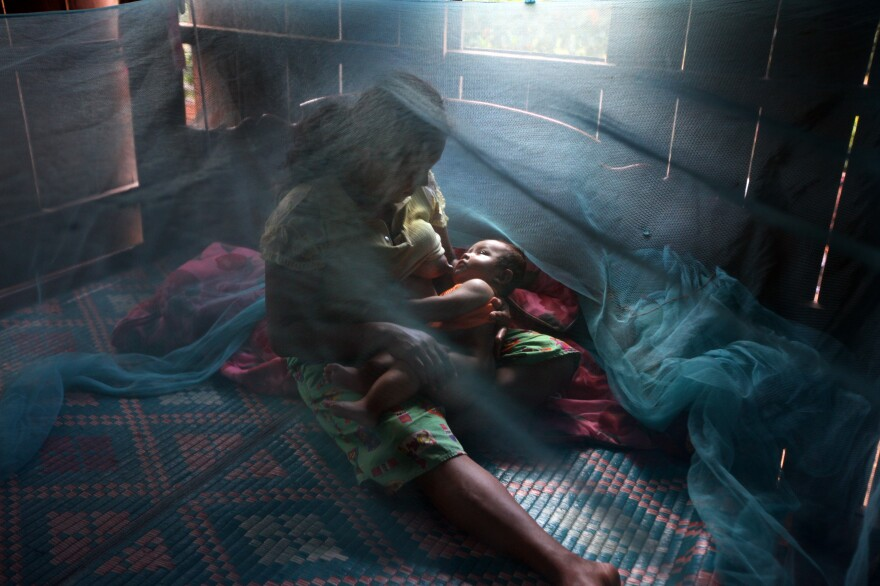 A mosquito bed net keeps the bugs out. The photo was taken in Pailin province, Cambodia.