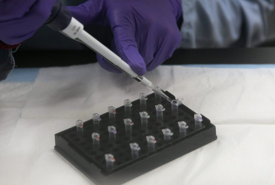 In this Feb. 2012, file photo, senior criminalist Michelle Halsing works on mitochondrial DNA testing at the State of California Department of Justice Jan Bashinski DNA Laboratory in Richmond, Calif. (Jeff Chiu/AP)