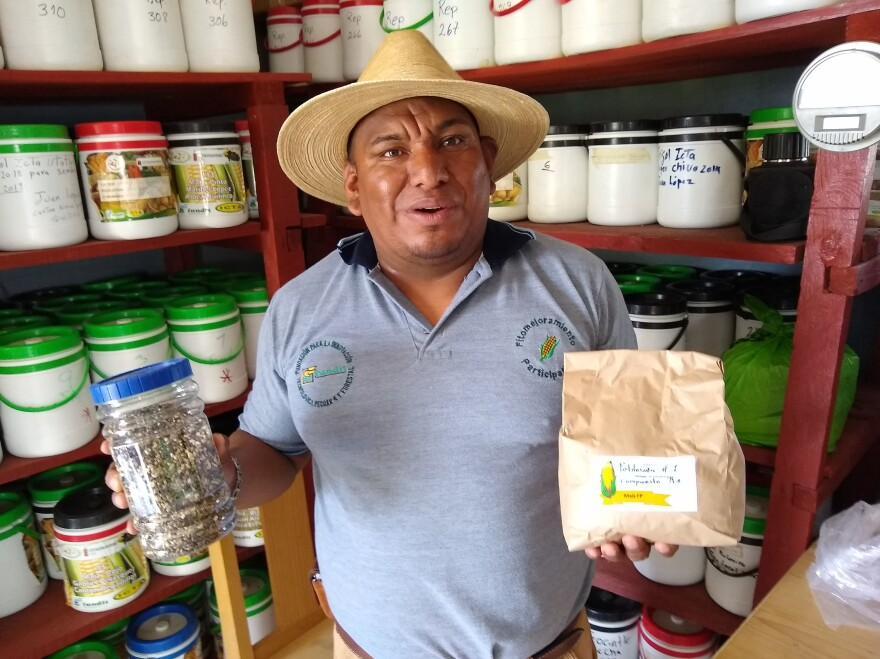 Esvin López oversees the USAID-funded seed reserve in the Guatemalan village of Quilinco. He holds a jar of seeds he's collected for research and a bag of hybrid seeds for cornstalks that can cope with climate-related challenges like windstorms.