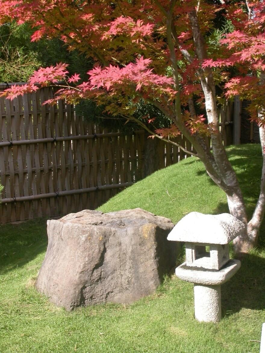 Japanese_Maple,_Lantern,_and_Meditation_Rock.JPG
