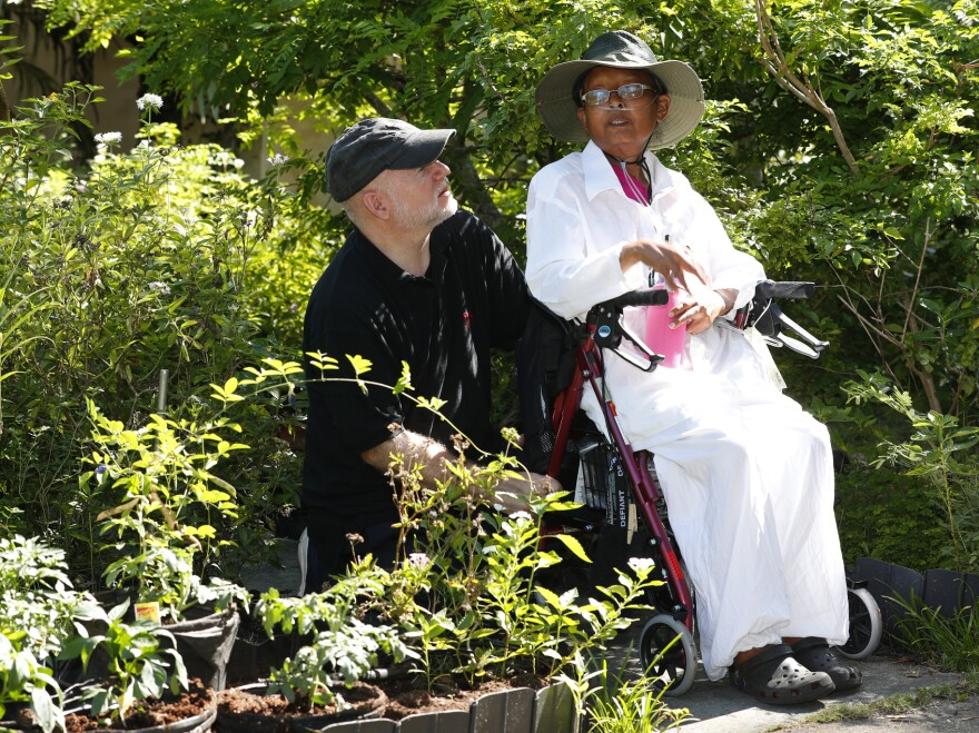 Homeowners Tom Carroll and Hermine Ricketts held a ceremonial planting of vegetables in their garden on Monday. The Village of Miami Shores had prohibited front-yard gardens, but the Florida Legislature passed a law that assures such gardens' legality.