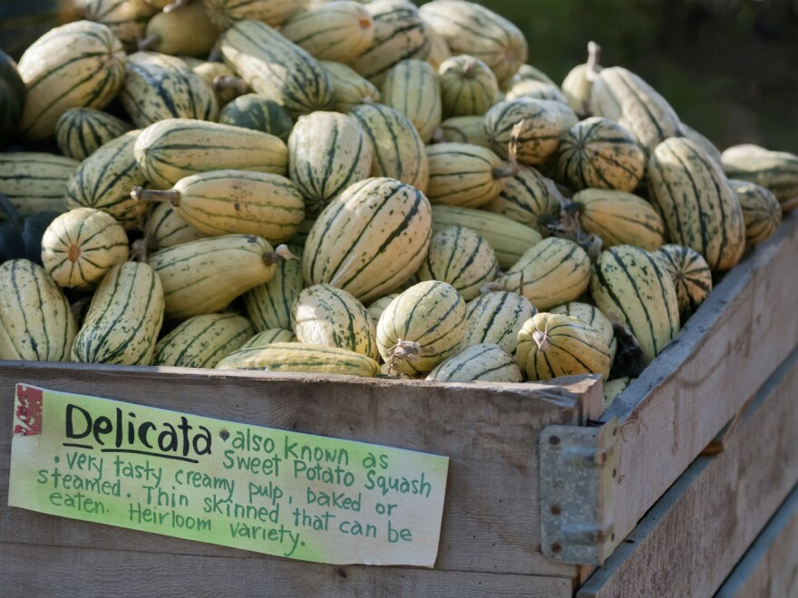 Delicata and acorn squash are best eaten in the first few weeks after harvest.