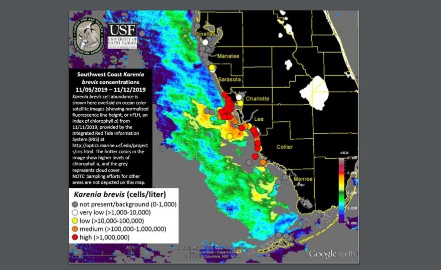 11-13-19_red_tide_map_usf.jpg