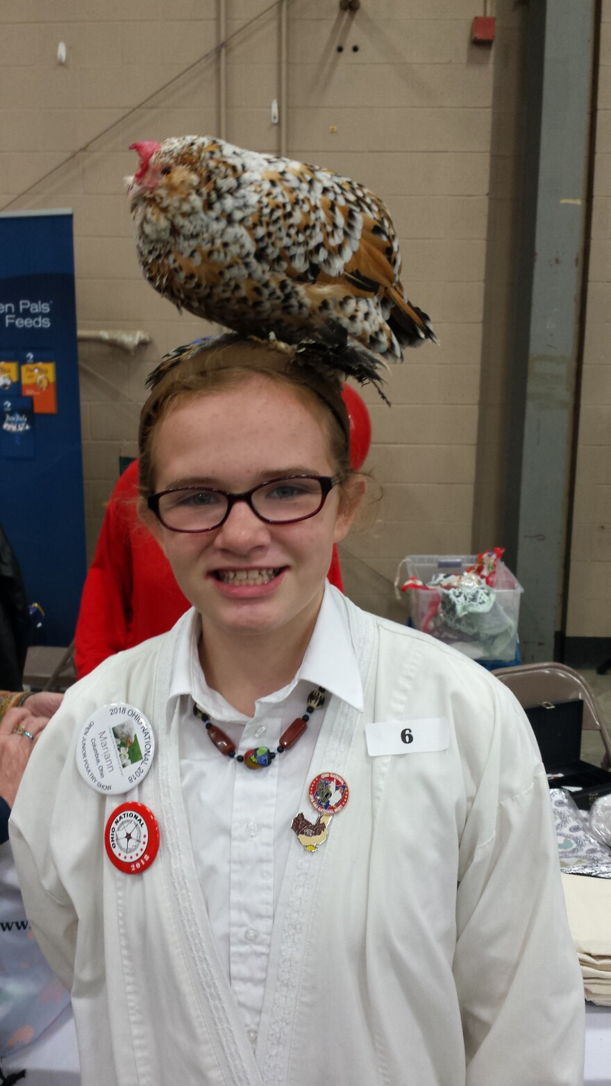 Mary Ann, 11 year old from Kenton with her chicken Queenie, a Mille Fleur Belgian Bearded D'Uccle, on her head.