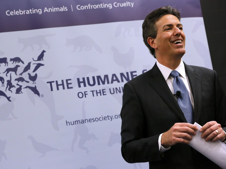 Wayne Pacelle, former CEO of the Humane Society of the United States, at a 2015 news conference. Pacelle resigned Friday.