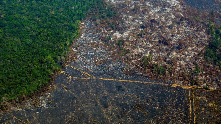 An aerial view of the Cachimbo Biological Reserve in Altamira, Brazil, reveals the scale of the burned land in the Amazon basin, back in August. Critics of Brazilian President Jair Bolsonaro trace the recent spike in fires to his administration's lax environmental policies.