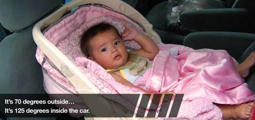 According to KidsAndCars.org,  at least 694 children have died from heatstroke in vehicles in the United States over the past 20 years. Florida ranks the 2nd highest state with the most child vehicular heatstroke deaths  with a total of 91 fatalities from 1992-present.