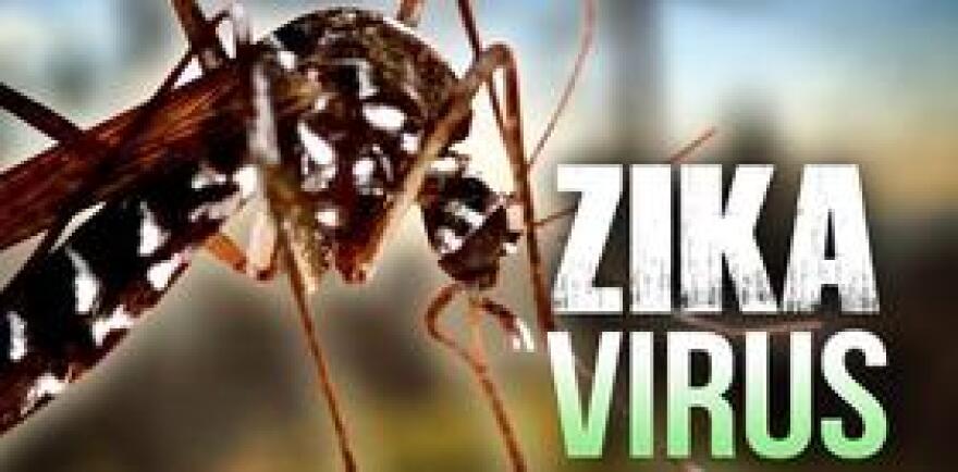ZikaVirusMGN0513.jpg