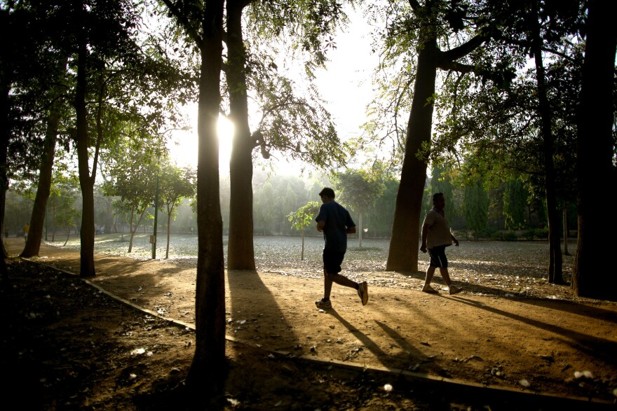 In the Indian capital of New Delhi — the city with the most polluted air in the world — exercising outdoors is as good for your lungs as chain smoking.
