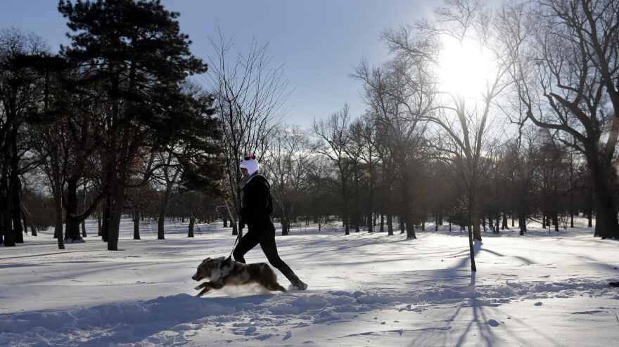 Courtney Martin jogs through the snow with her dog, Theodore, in St. Louis. Missourians and their pets muddled through another frigid day Tuesday.